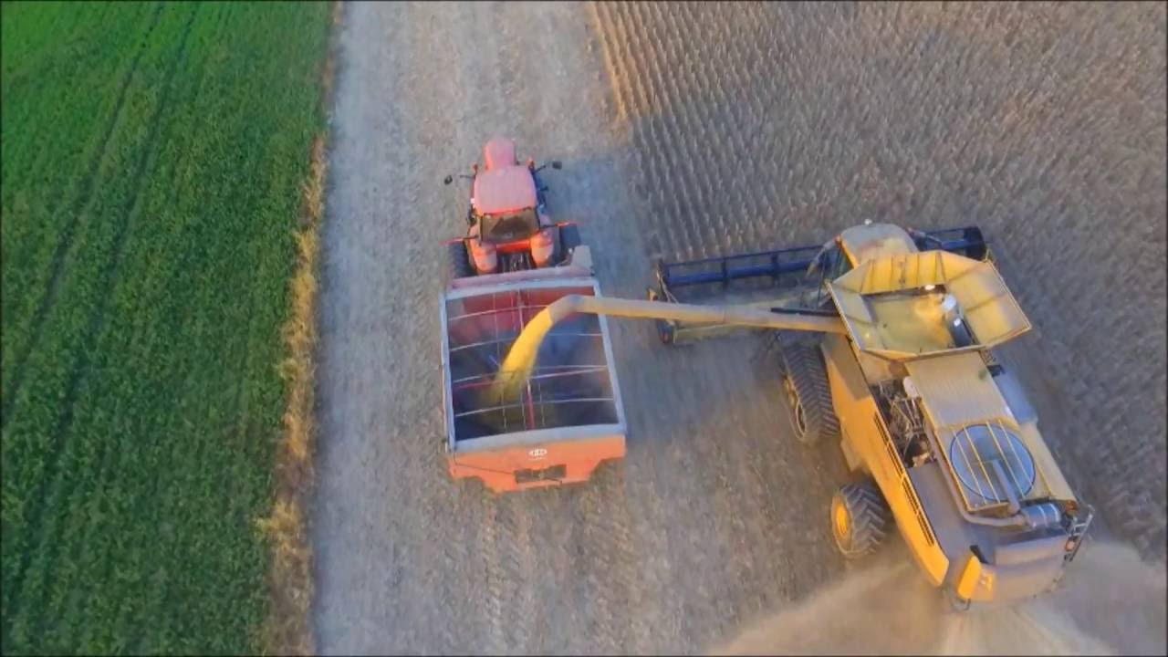 Combining Soybeans On 10 14 16 With A Claas Lexion 740tt