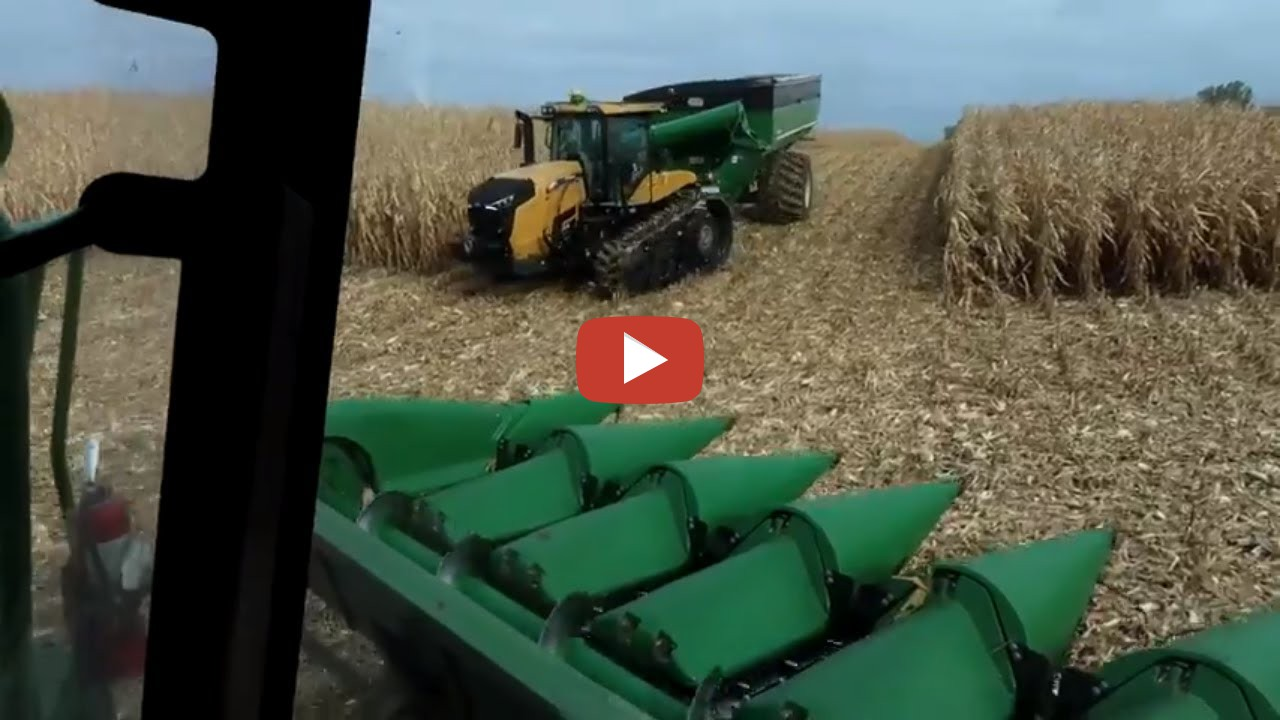 mn millennial farmer --harvest resumes- game on