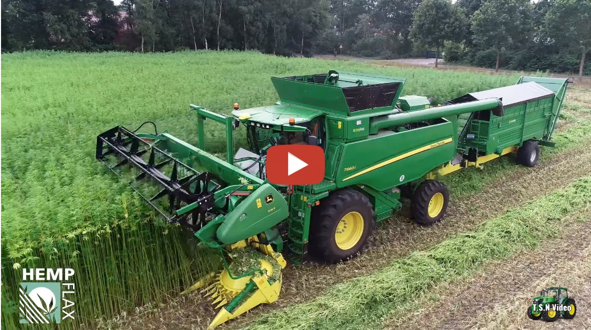 Hemp Harvest 2019 John Deere Double Cut Combine