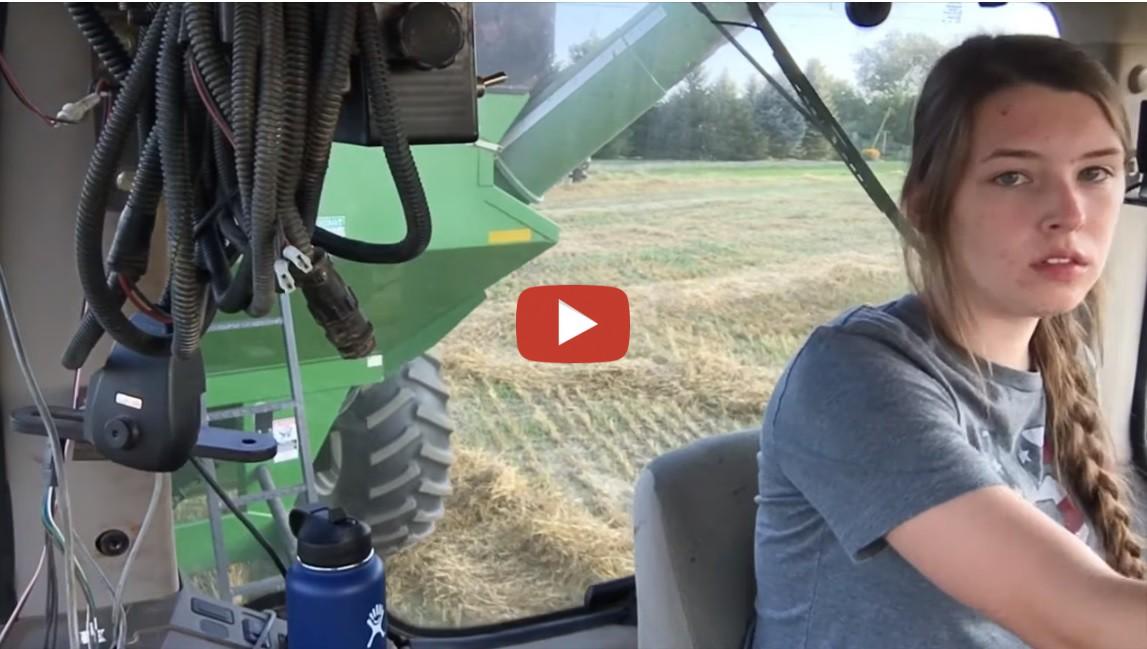 John Deere 9560 Combine- Cutting Wheat 2019 at Hourigan ...